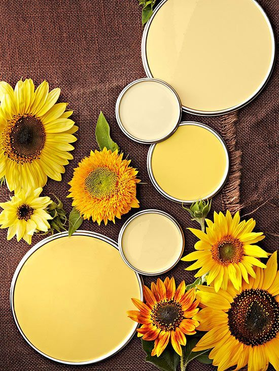Best Pale Yellow Paints For Kitchen: 25+ Best Ideas About Pale Yellow Paints On Pinterest
