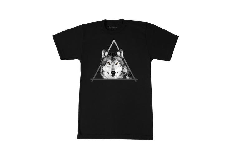 Mon tee shirt Stephen Springsioux : j'ai choisi en noir !