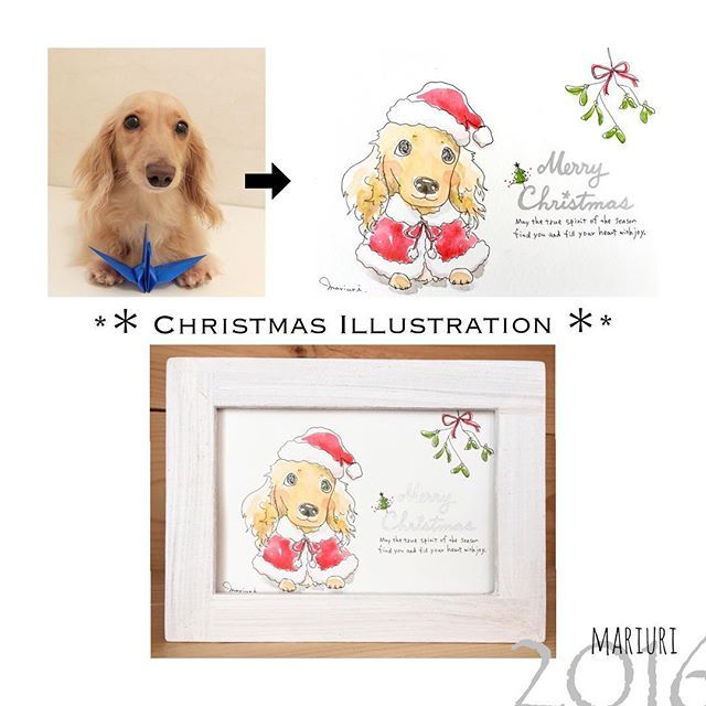 🎄Christmas illustration🎄 **❄️クリスマス限定イラストのご案内❄️** . お待たせしておりました、クリスマス限定イラストのお申込みを始めさせていただきます❣️╰(*´🔻`*) . クリスマス限定イラストは、ペットさんにサンタ帽やサンタ服、ツリーにヤドリギなど、クリスマスにまつわる可愛いアイテムをお付けしてお描きします🐾🐶🎄🎅 . フレームは、クリスマス限定フレームとして、スノーホワイトの額を特別にご用意させていただきました❄️⛄️ *絵1枚につきペット1匹のみとなります。 . イラストにお書きする文字はクリスマスバージョンとして新しくご用意致しました😘🌲 下記⑥or⑦のどちらかをお選び下さいませ✨ . ⑥ Your Kiss can be my best Christmas gift. (あなたのキスが最高のクリスマスプレゼントです) ⑦ Wish you lots of love,joy&happiness. (Love,JoyとHappinessをこめて) . ※ Merry Christmas…