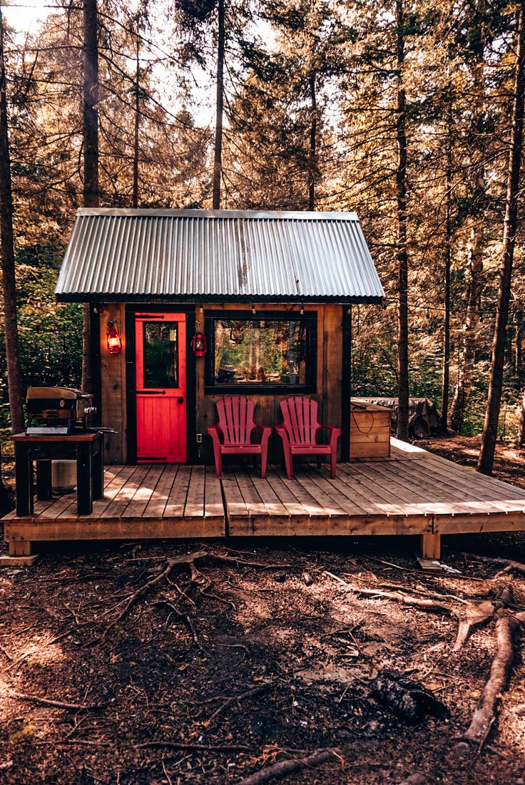This Tiny Cabin In The Redwoods Is The Perfect Getaway For: This Tiny House Has Everything You Need For The Perfect