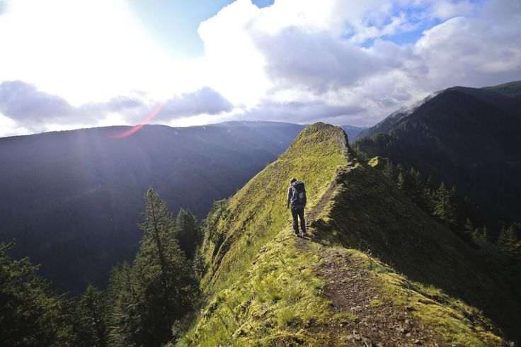 Munra Point Trail is a 5.6 mile out and back trail located near Cascade Locks, Oregon and is rated as difficult. The trail is primarily used for hiking and is accessible from April until June.
