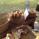 This is our neighbour at @soraurenpark market: @delaterre bakery has the perfect bread for our cheese today 3-7pm #PicnicSupper
