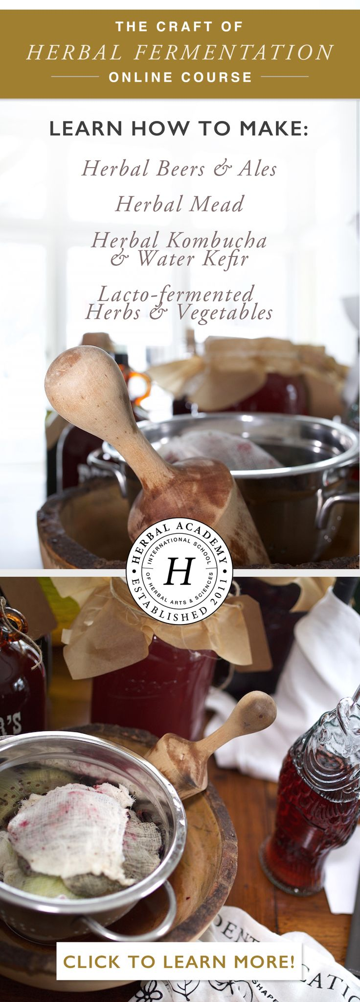 Learn how to make your own herbal beers and ales, mead, kombucha, and more!
