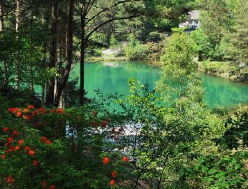 The Blue Pool, Wareham, Dorset. A unique attraction in the Isle of Purbeck. A chance to escape the outside world and enjoy walks around a magical Pool famous for its ever changing colours. Sandy Paths lead up steps to views of the Purbeck Hills or down steps to the waters edge. Giftshop, Museum and Plant Centre. The Teahouse offers morning coffee, delicious lunches and cream teas with homemade scones. Distance from Shaftesbury to Wareham 26 miles. by B. Lowe