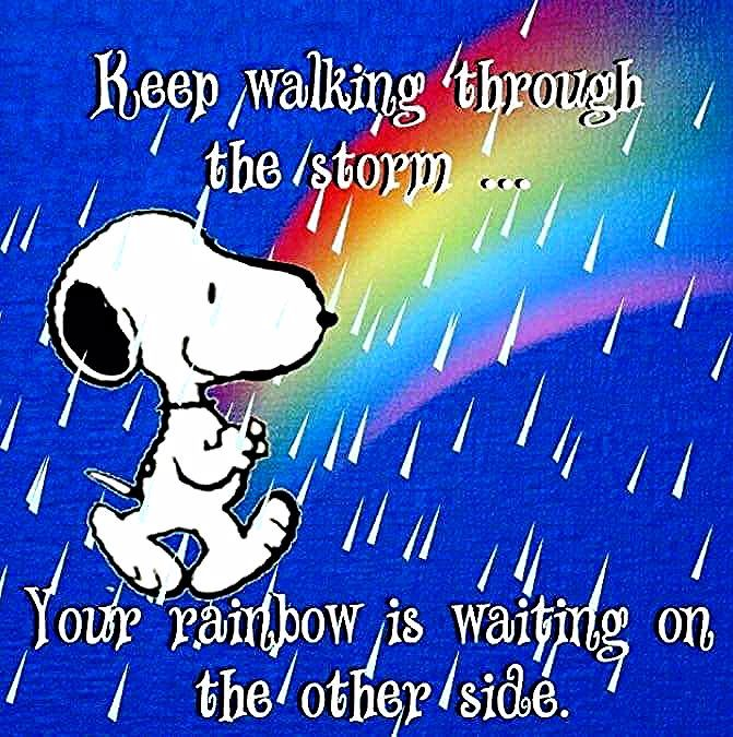 Keep walking through the storm...   Snoopy quotes, Snoopy funny, Charlie  brown quotes