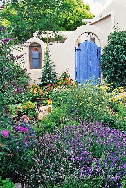 Die besten 25 d rreresistente pflanzen ideen auf for Dekor von zierpflanzen