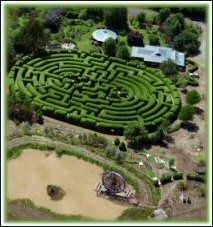 Maze - Wandiligong Maze and Cafe, Wandiligong, near Bright, Victoria, Australia