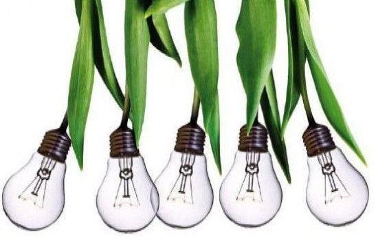 """Il colore delle buone notizie è sempre più green. Verde color speranza, dunque, ma anche verde color dollari, cioè ricchezza. Due cose che, di questi tempi, sembrano andare molto a braccetto. A sostenere i due pilastri dell'ottimismo, in Italia, un settore """"verde"""" per definizione: quello delle energie rinnovabili dove il trend di crescita è sostenuto e i rendimenti sono tra i più alti in Europa."""