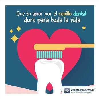 Que tu amor por el cepillo dental dure para toda la vida #OdontólogosCol #Odontólogos
