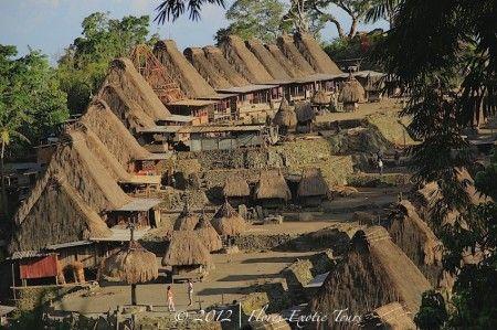 Kampung Bena , Flores Island