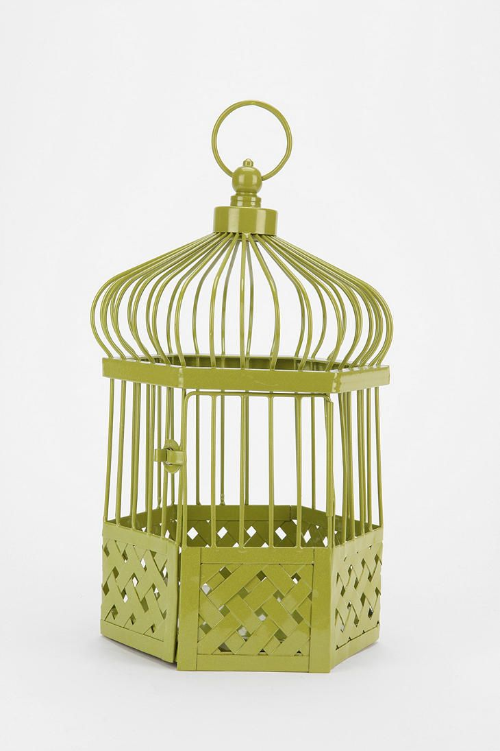 46 best I Know Why the Caged Bird Sings... images on Pinterest ...