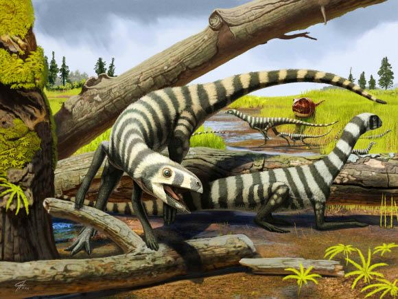 Triassic Fossils Indicate How Dinosaurs Grew from Hatchlings to Adults Apr 6, 2016 by News Staff / Source