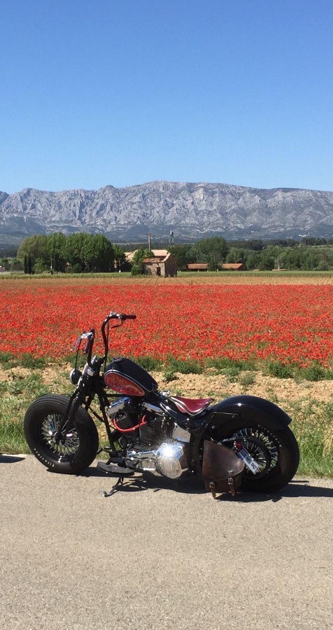 Harley Bobber Chopper                                                       … #harleydavidsonchoppersbikes