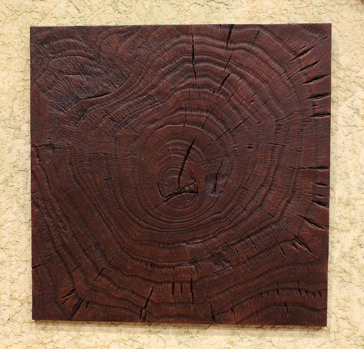 Panel sección tronco 50x50 cm.