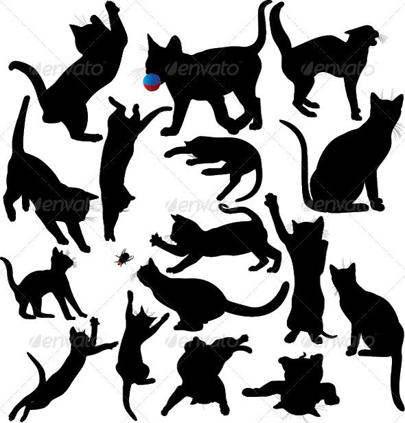 Cat and Kitten Silhouette Set  -         Silhouettes of cats and kittens playing,