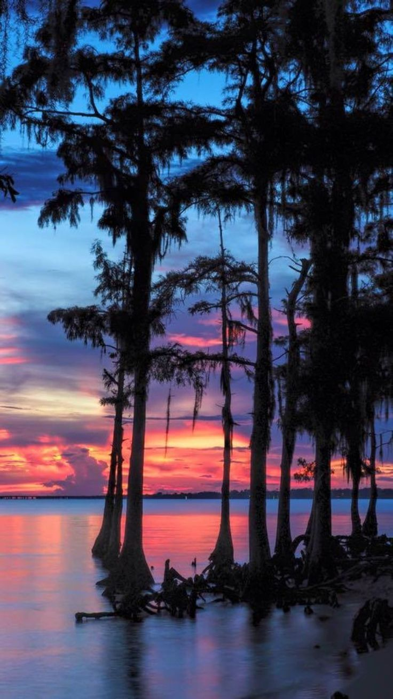 Best 25 Bayou Country Ideas On Pinterest Plantation
