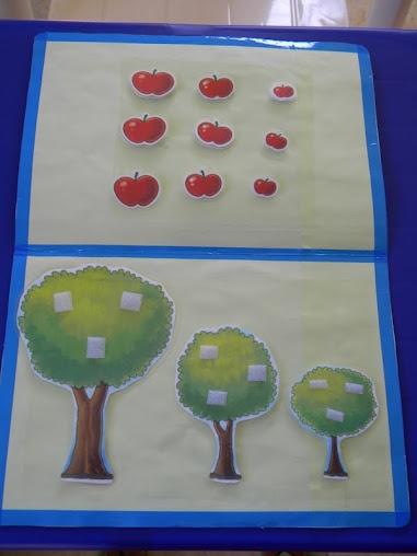welke appels moeten in welke boom? Groot - Middelgroot - klein