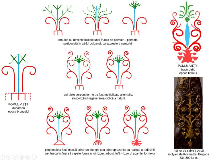 În a doua jumătate a mileniului I î.e.n, se produc câteva schimbări semnificative în modul de reprezentare a Pomului Vieţii: perechile de ramuri devin, în principal, foliolele unei frunze de palmier, căpătând aspectul unei palmete, spiralele serpentiforme se multiplică alternativ, iar pieptenele a fost înlocuit printr-un triunghi sau prin reprezentarea realistă a rădăcinii, pentru ca în final să capete forma unei plante, rizom, arbust, tufă.