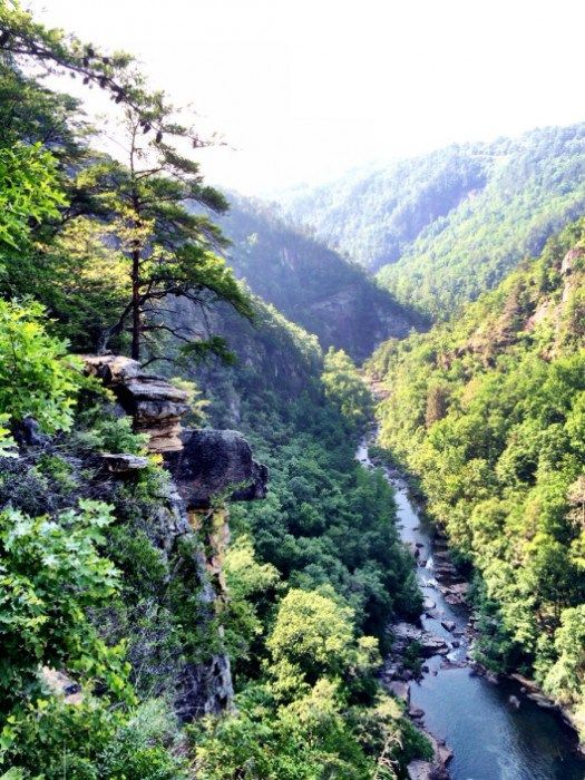 16 Best Fun Things To Visit In Georgia Images On Pinterest