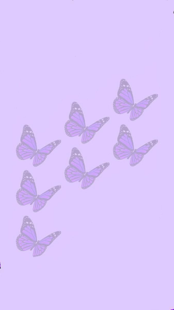 Faded Light Purple Wallpaper Purple Wallpaper Iphone Butterfly Wallpaper