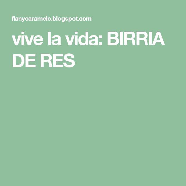 vive la vida: BIRRIA DE RES