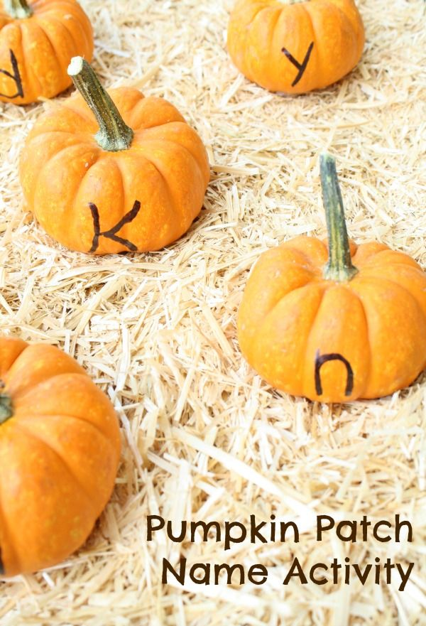 The Great Pumpkin Patch Game | Great Activities