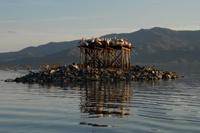 Visit Greece | Kerkini Artifical Lake