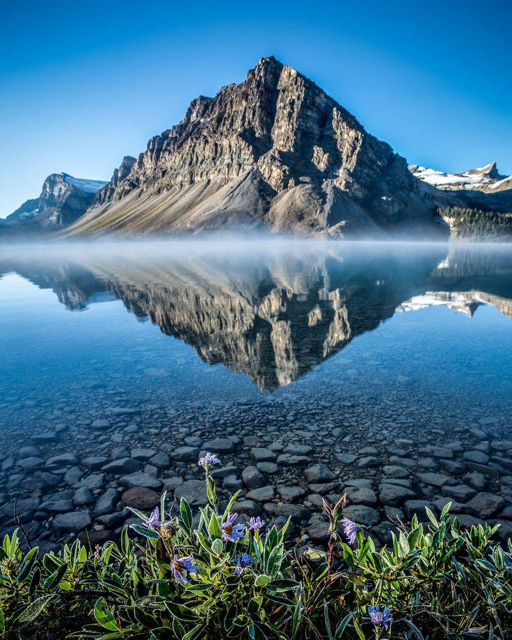 Bow Lake in the Alberta Rockies (via Jason Kenney (@jkenney) | Twitter
