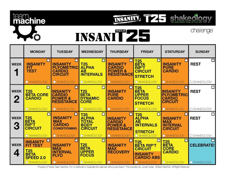 Insanity  T Hybrid Insanit Workout Review  Calendar