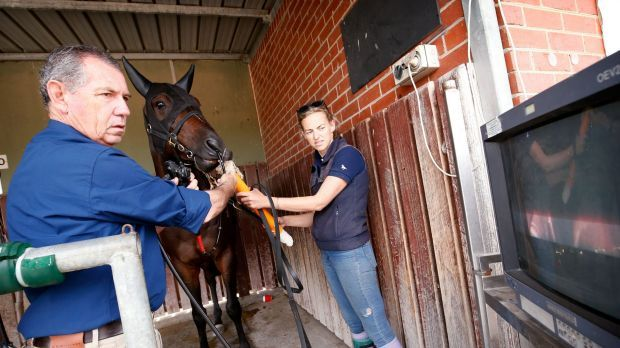 #Australian biotech to measure horse lung capacity could revolutionise racing - The Sydney Morning Herald: The Sydney Morning Herald…