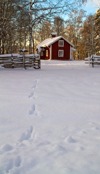 Winter in Småland, Sweden I understand why my ancestors settled in Minnesota. It looked like home.