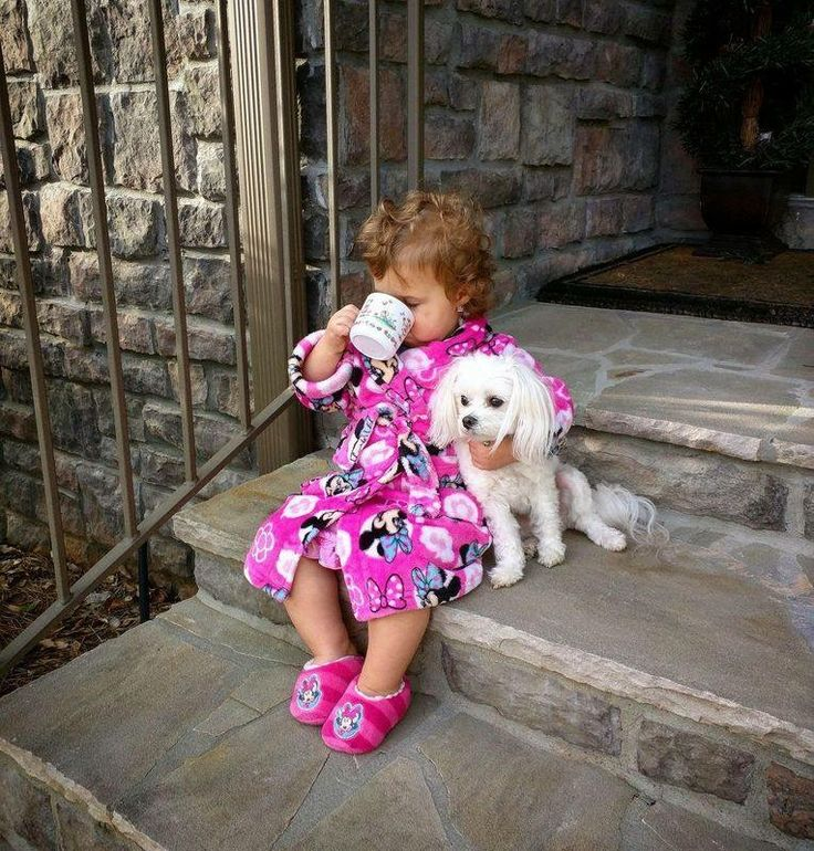 Adorable Little Girl drinking her drink cuddling her Poodle Puppy