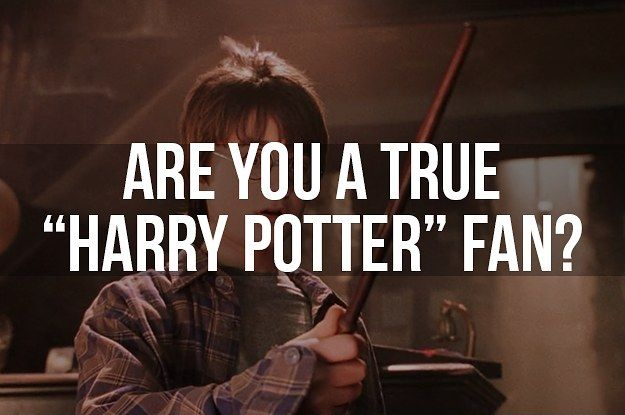 "Are You A True ""Harry Potter"" Fan You got: True Potterhead Congratulations!! You have proven yourself! Your love for Harry Potter burns with the fire of a thousand suns, which is intense and kind of scary, actually…"