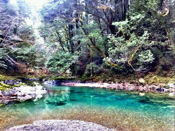 Winchuck River Campground Brookings Oregon January 2013 My Photography Pinterest Rivers
