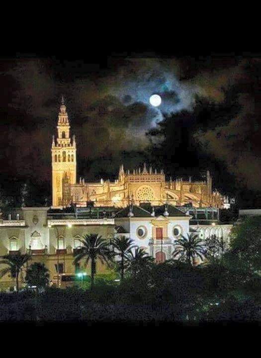 Sevilla _ Giralda, Catedral y la Real Maestranza ⭐⭐