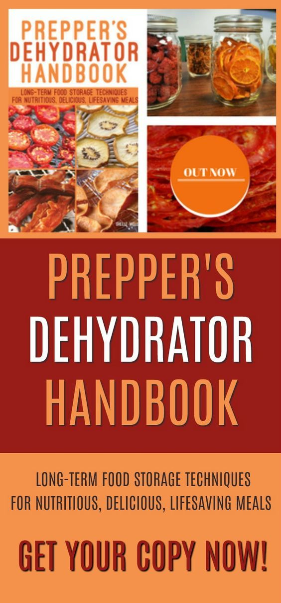 Prepper's Dehydrator Handbook. Long-term food storage techniques for nutritious, delicious, lifesaving meals. Available now #dehydrating #foodstorage #preserving #preppersdehydratorhandbook