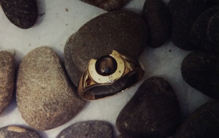 Black pearl set in a horse shoe signet ring