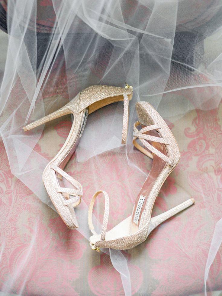 Salvia   Josh \ Cairnwood Estate Summer Wedding \ Philadelphia Lauren Fair Photography - Film Wedding Photographer