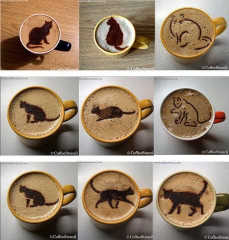 If a professional barista is too expensive, you can make them smile with a sweet chocolate cat  Cat Coffee Stencils