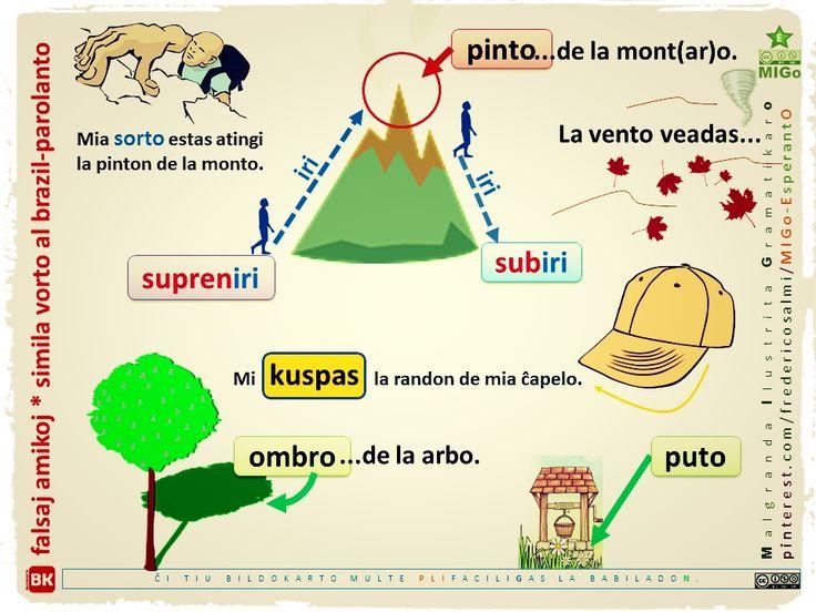 #migo #esperanto #gramatiko #falsaamiko #similavorto #vorto #veado #pinto #puto #ombro #kuspi #subiri #sorto #akuzativo