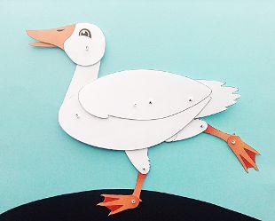 White Duck - main image