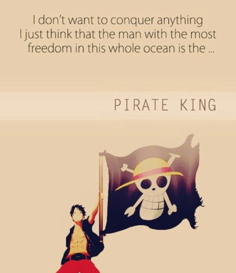 One Piece Luffy Pirate King