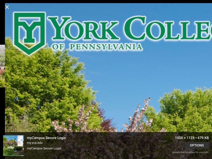 Groom went to York College in Pennsylvania and played Lacrosse