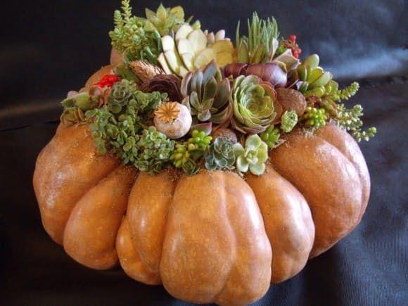 How To Make a Pumpculent (Pumpkin + Succulent!) Centerpiece — The Gardenist   Apartment Therapy