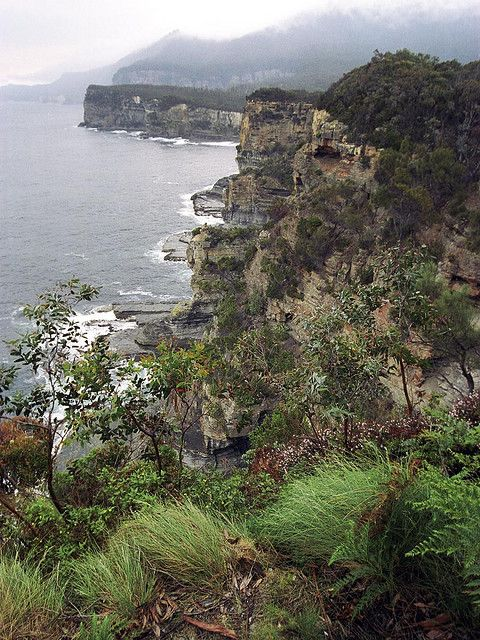 Devils Kitchen Cliffs | Beautiful, rugged South East Tasmania, looking down the Tasman Peninsula towards the south.