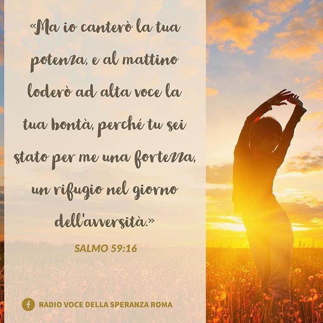 Buona giornata☀️ #Bibbia #Salmi #versettibiblici #fede #radiovocedellasperanza