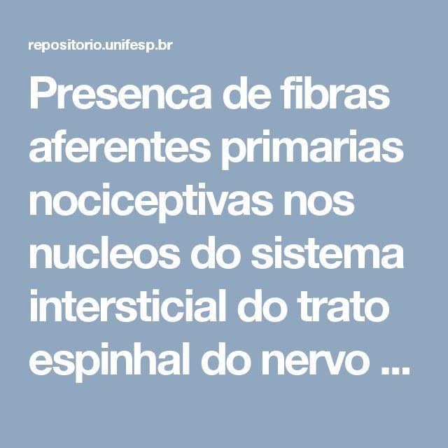 Presenca de fibras aferentes primarias nociceptivas nos nucleos do sistema intersticial do trato espinhal do nervo trigemeo no rato