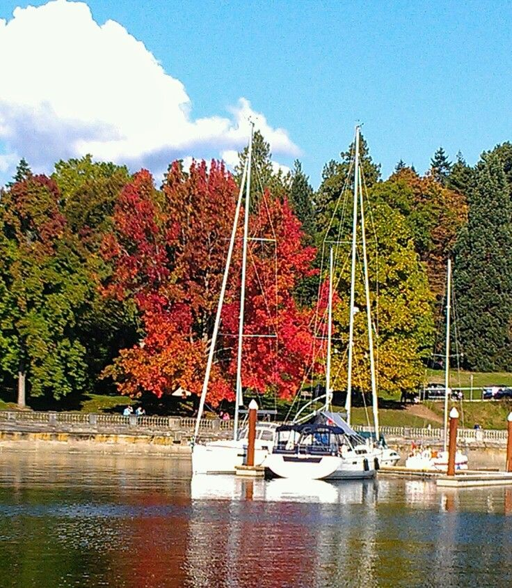 Stanley park fall color, Vancouver BC. Photo by JerrySmith