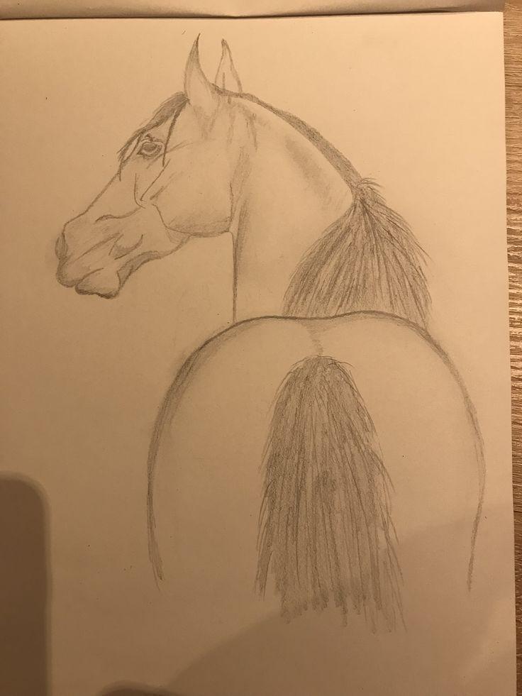 Pferd, Zeichnung, Bleistift #drawings #art