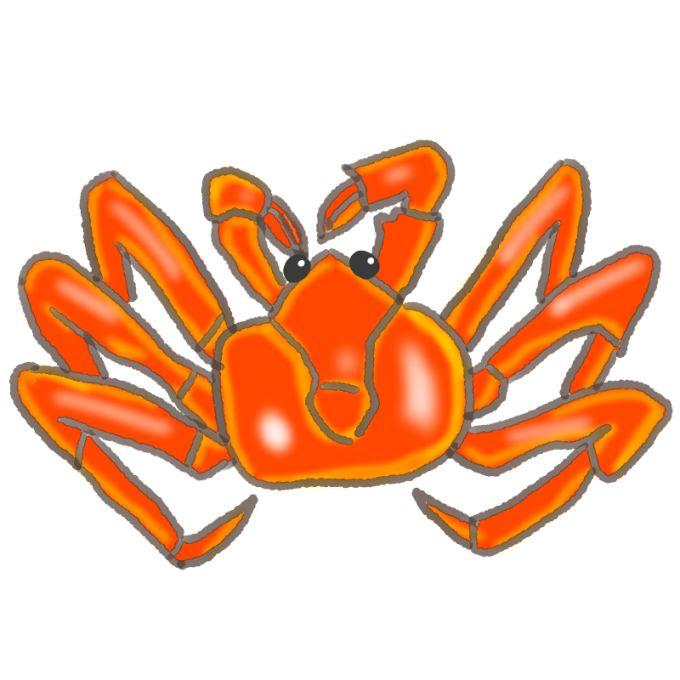 タラバガニ20150611-00
